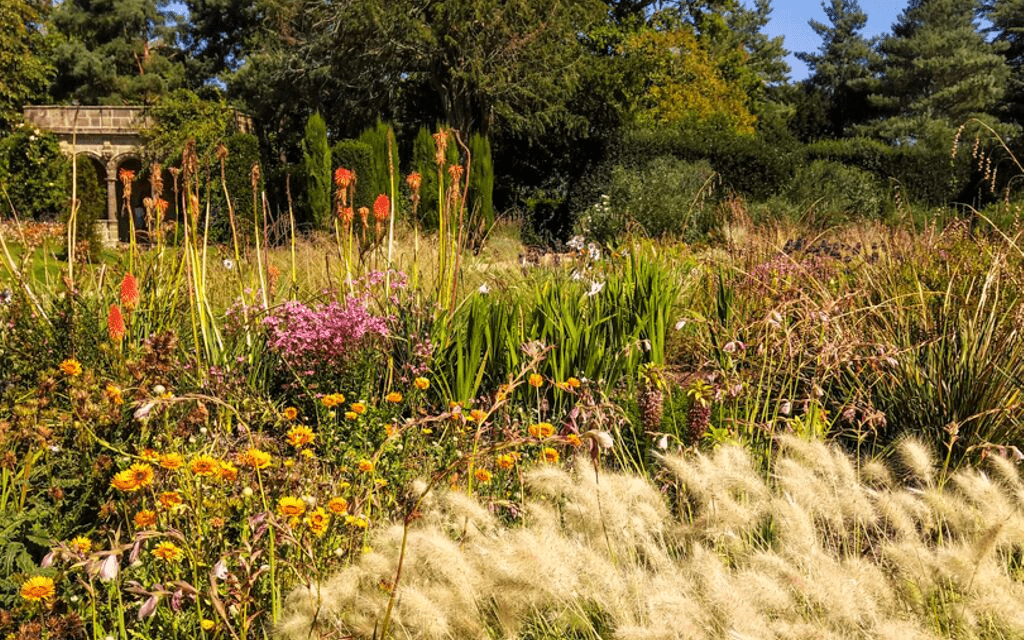 Rock and Heath gardens at Nymans