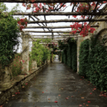 The Pergola walk in the Italian garden at Hever Castle