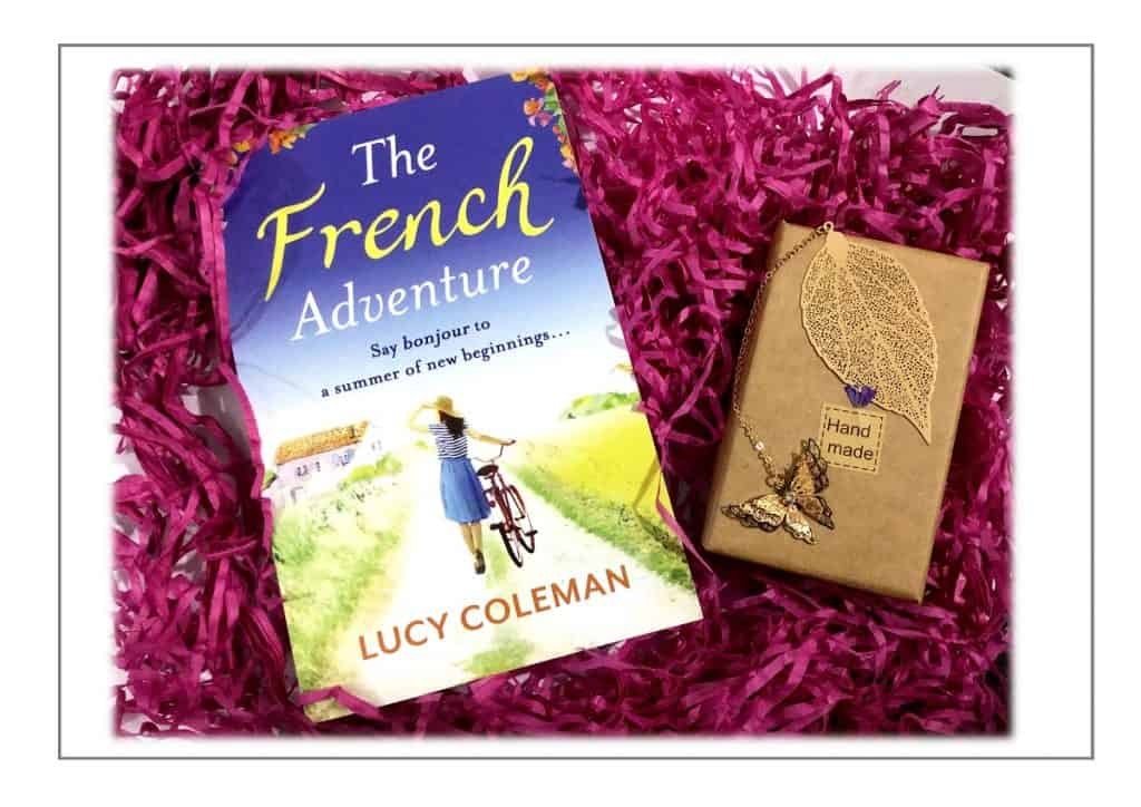 Win a copy of The French Adventure by Lucy Coleman