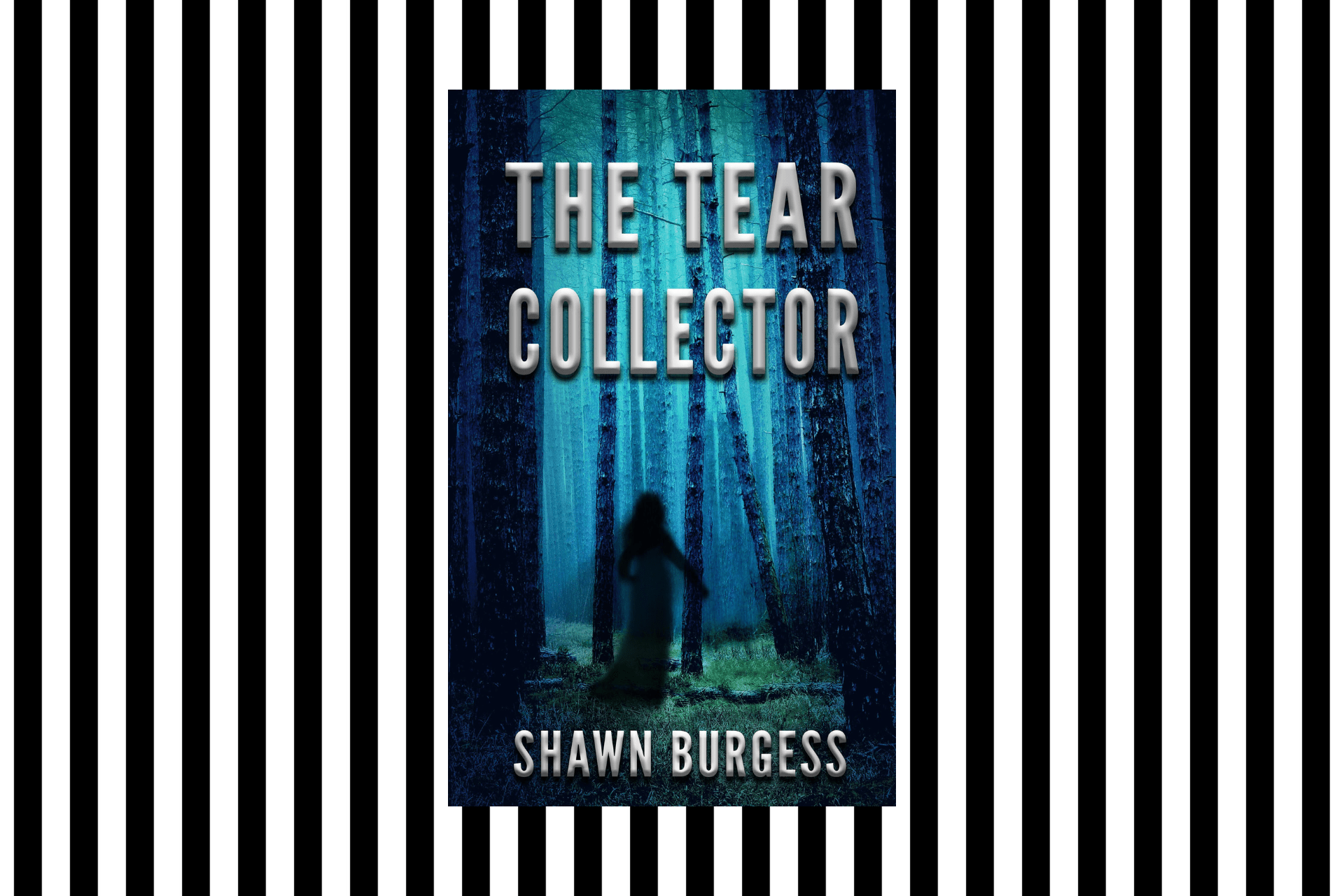 The cover of The Tear Collector by Shawn Burgess
