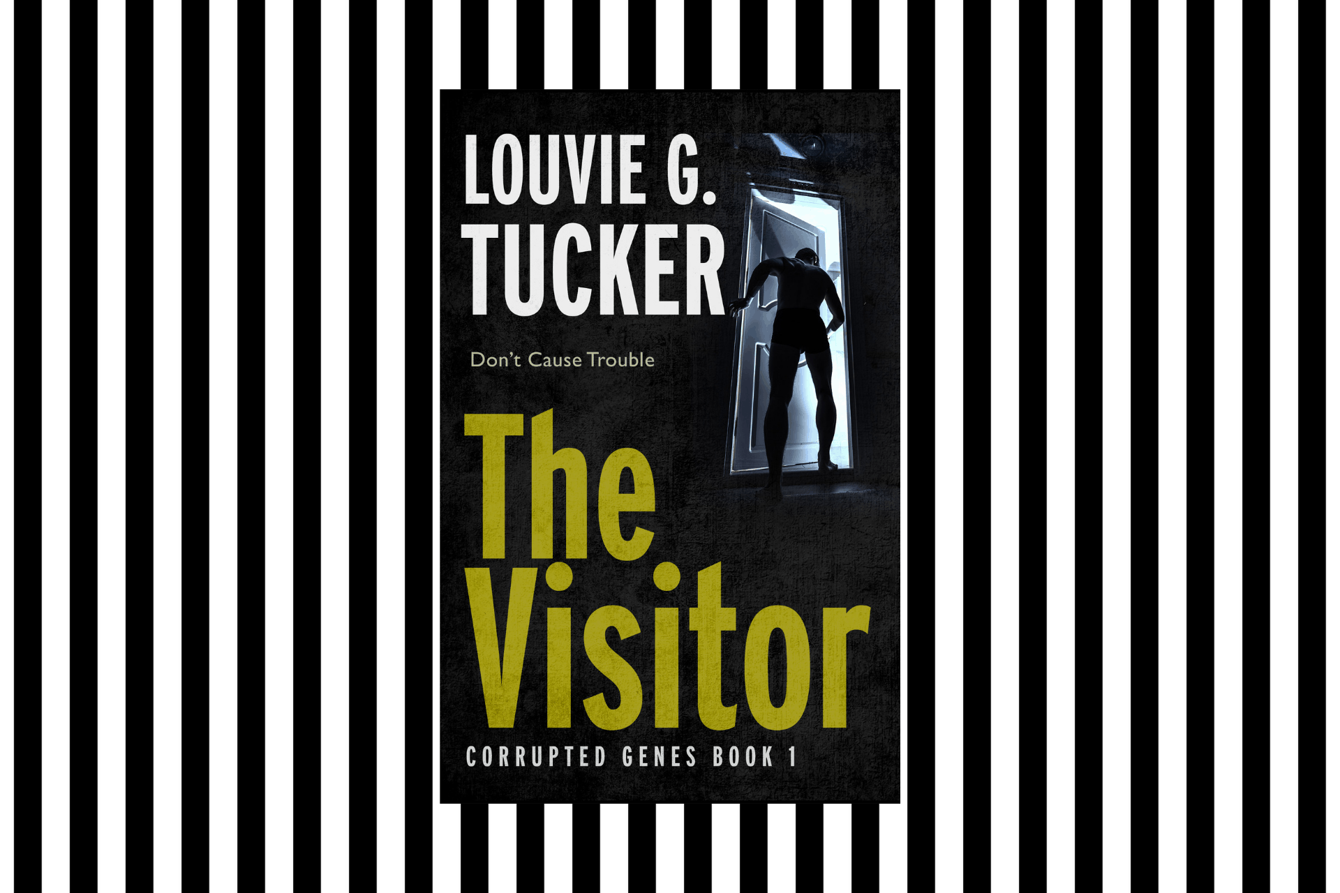 The cover of The Visitor by Louvie G Tucker